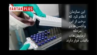 آخرین خبر از تولید واکسن کرونا